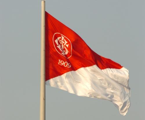 Bandeira Oficial SCInternacional